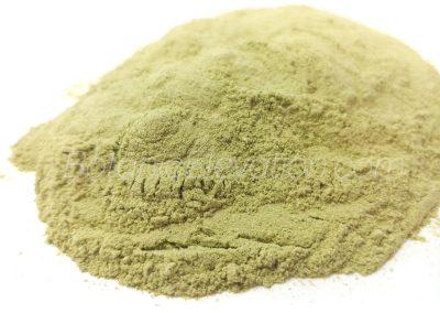 San Pedro (Huachuma) Powder 2