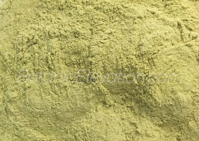 San Pedro (Huachuma) Powder 3 Close-Up (watermarked)