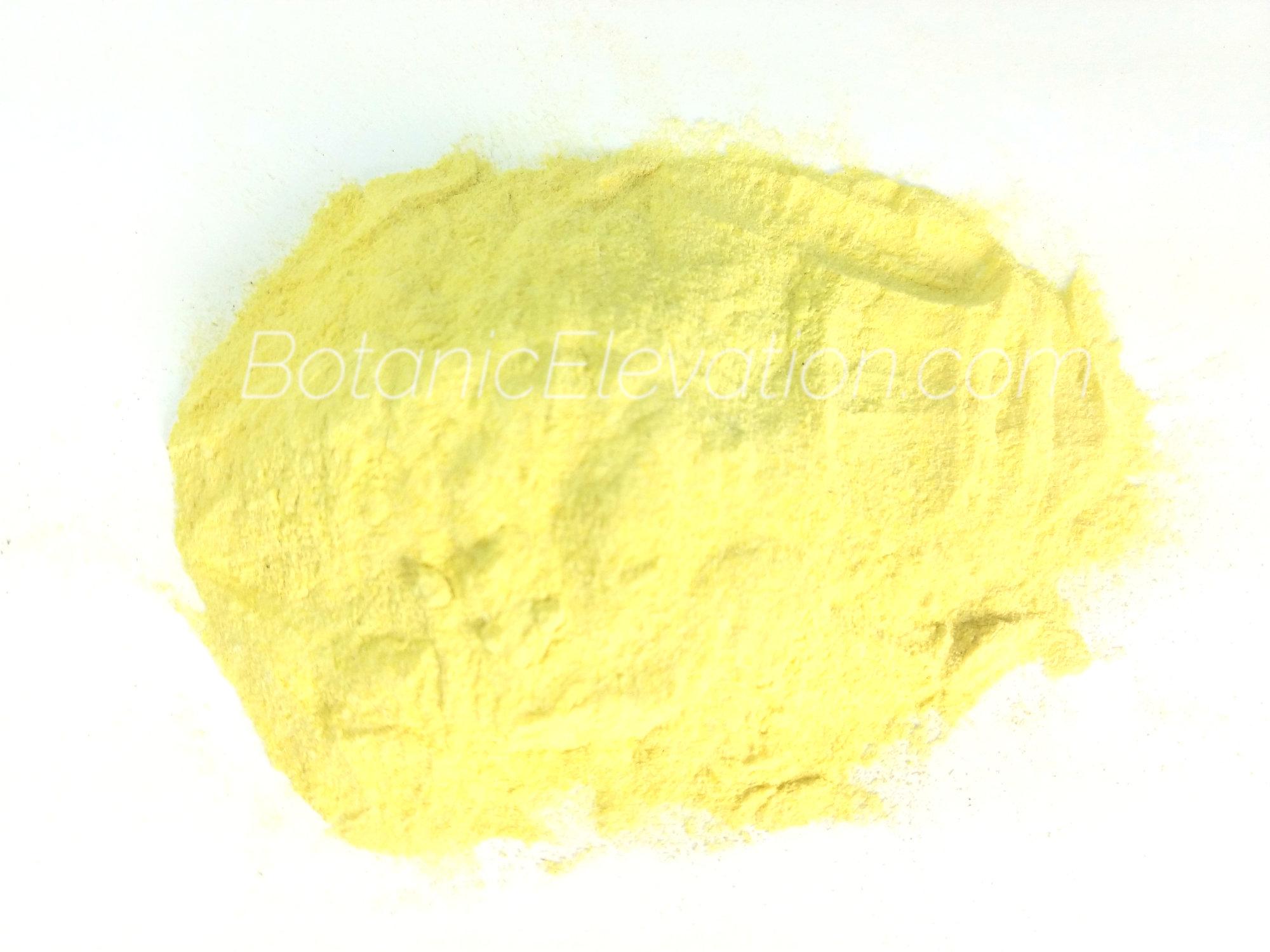 Kava Extract (30% kavalactones)